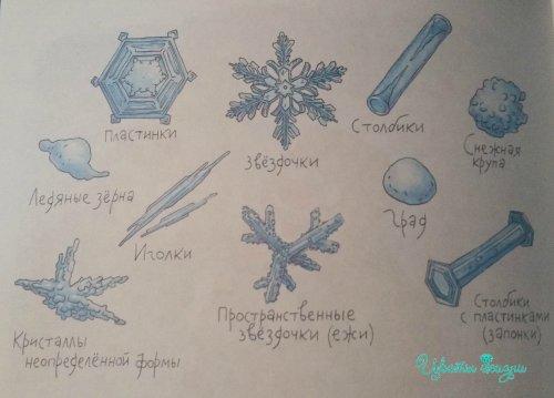 snezhiznki_500x359