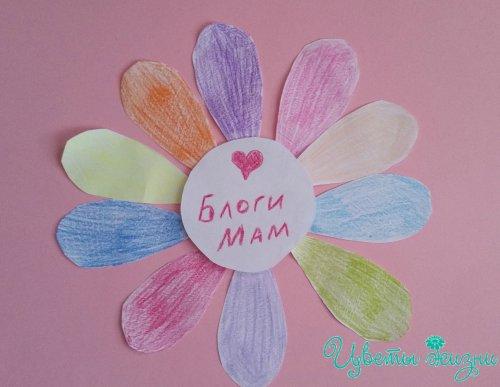 blogimam_500x387