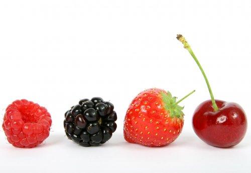 berry-1238249_1920_500x346