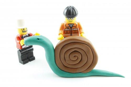 snail-2158111_1920_500x333