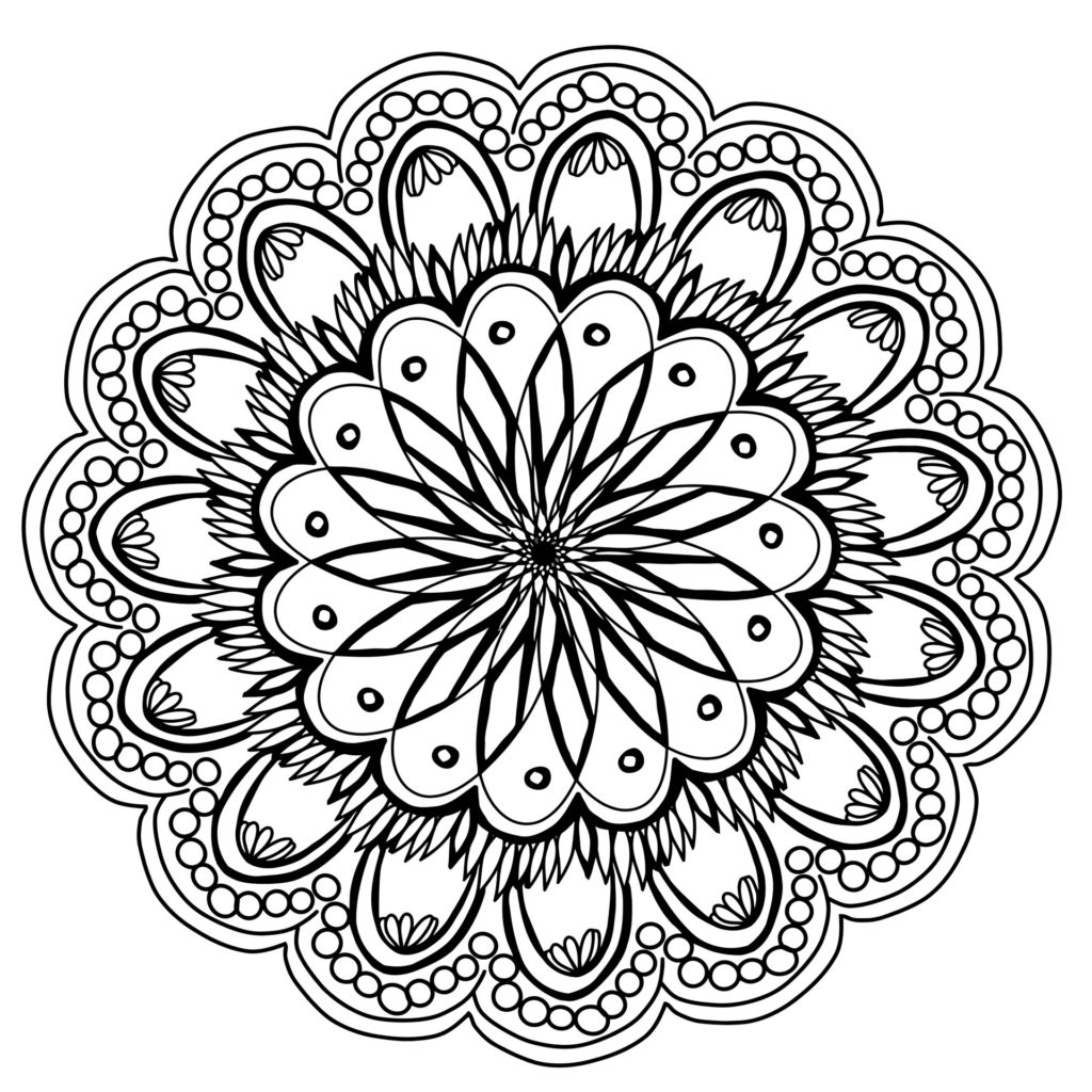 flowers-2147877_1920