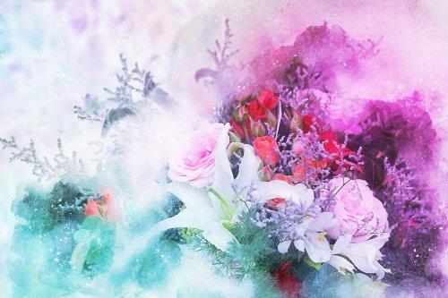 flowers-2611474_1920_500x333