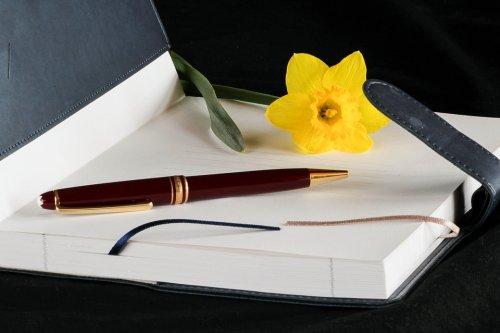 diary-92652_960_720_500x333