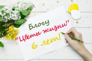 blogu-6-let