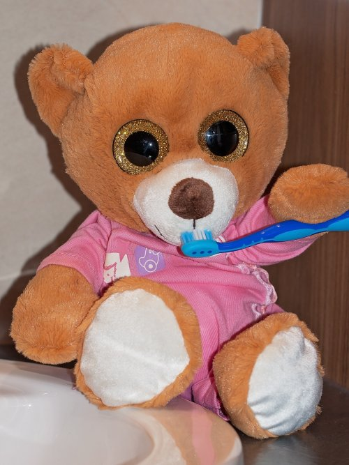 teddy-bear-1160759_1920_500x667