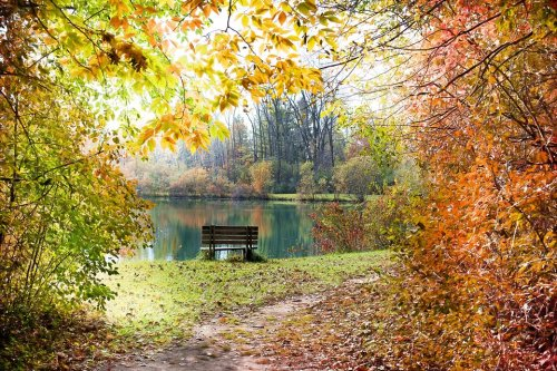 Приметы осени для дошкольников. Поговорки про осень для детей
